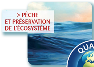 Pêche et préservation de l'écosystème