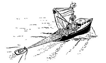 Pêche à la senne 01