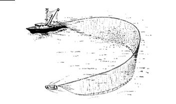 Pêche à la senne 02