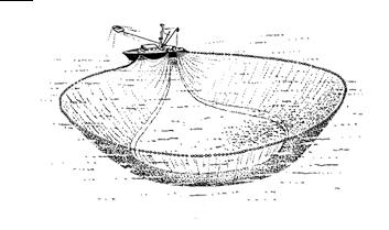 Pêche à la senne 03