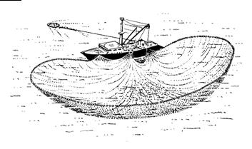 Pêche à la senne 04