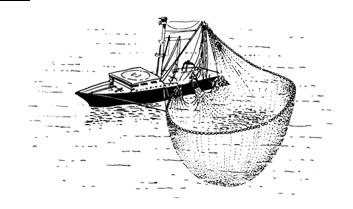 Pêche à la senne 05